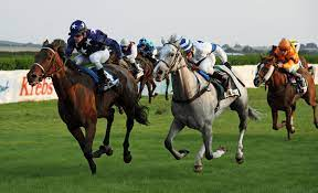 The Importance of Horse Racing Tipsitors